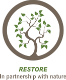 Restore With Mother Nature